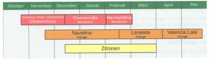 Erntetermine Orangen, Clementinen, Zitronen